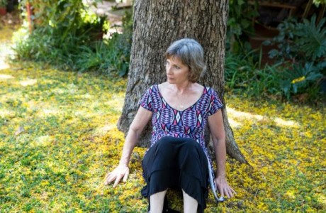 רותי דגוני פיש- בהירות ,סדר וריפוי